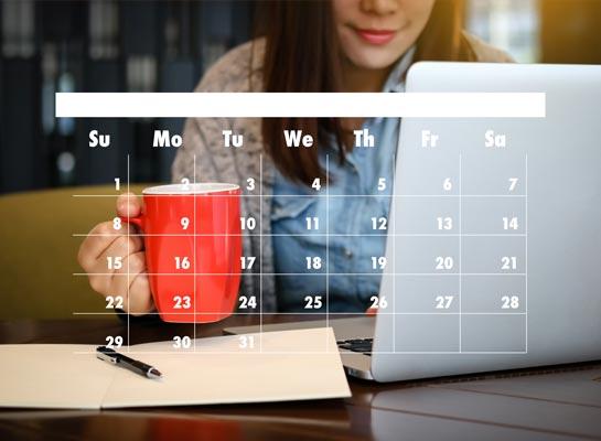 Paul Kirk Design - Social media scheduling management norfolk